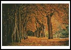 Mini Autumn Landscape - Cross Stitch Chart
