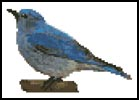 Mini Blue Bird - Cross Stitch Chart