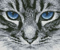 Mini Blue Eyes 2 - Cross Stitch Chart