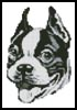 Mini Boston Terrier Drawing - Cross Stitch Chart