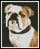 Mini Bulldog - Cross Stitch Chart