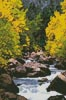Mini Carson River - Cross Stitch Chart