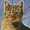 Mini Cat Fractal - Cross Stitch Chart