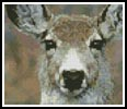 Mini Deer Face - Cross Stitch Chart