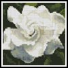 Mini Gardenia - Cross Stitch Chart