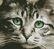 Mini Green Eyes - Cross Stitch Chart