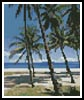 Mini Island 2 - Cross Stitch Chart