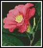 Mini Japanese Camellia - Cross Stitch Chart
