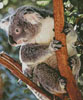 Mini Koala Photo - Cross Stitch Chart