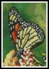 Mini Monarch Butterfly - Cross Stitch Chart