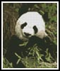 Mini Panda - Cross Stitch Chart
