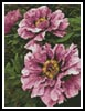 Mini Pink Petals - Cross Stitch Chart