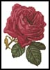 Mini Pink Rose - Cross Stitch Chart