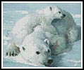 Mini Polar Bear and Cub - Cross Stitch Chart