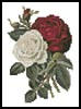 Mini Red and White Roses - Cross Stitch Chart