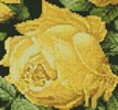 Mini Rosa Sulfurea - Cross Stitch Chart