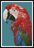 Mini Green-winged Macaw - Cross Stitch Chart