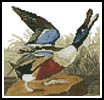 Mini Shoveller Duck - Cross Stitch Chart