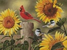 Mini Sunflowers and Songbirds - Cross Stitch Chart