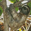 Mini Three Toed Sloth - Cross Stitch Chart