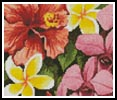 Mini Tropical Flowers of Oz - Cross Stitch Chart