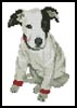 Mini T-Shirt Puppy - Cross Stitch Chart