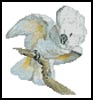 Mini White Cockatoo - Cross Stitch Chart