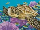 Mini Young Green Sea Turtle - Cross Stitch Chart