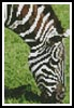 Mini Zebra Eating - Cross Stitch Chart