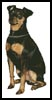 Miniature Pinscher - Cross Stitch Chart