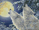 Moonlight - Cross Stitch Chart