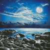 Moonlight Bay Photo - Cross Stitch Chart