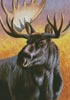 Moose Painting - Cross Stitch Chart
