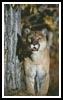 Mountain Lion - Cross Stitch Chart