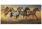 Mustangs - Cross Stitch Chart