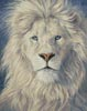 Mystical King - Cross Stitch Chart