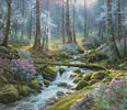 Natures Harmony - Cross Stitch Chart
