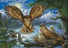 Night Owl Family - Cross Stitch Chart