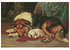 No Walk Today - Cross Stitch Chart