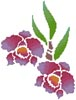 Orchid - Cross Stitch Chart