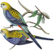 Pale Headed Rosella - (Facebook Group) Cross Stitch Chart