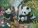 Panda Valley - Cross Stitch Chart