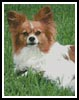 Papillon 2 - Cross Stitch Chart