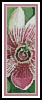 Passion Flower Bookmark - Cross Stitch Chart