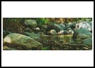 Peaceful - Cross Stitch Chart