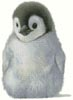 Penguin Chick - Cross Stitch Chart