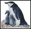 Penguin Family - Cross Stitch Chart