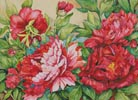 Peonies in Shades of Red - Cross Stitch Chart