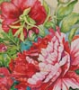 Peonies in Shades of Red (Crop) - Cross Stitch Chart