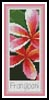Pink Frangipani Bookmark - Cross Stitch Chart